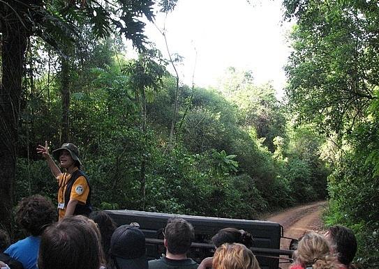 Safari y selva Iguazú